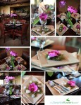 Orchid plant arrangement as a wedding centerpiece